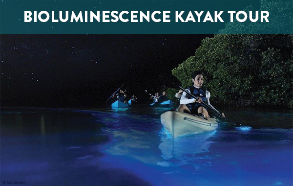 Bioluminescence Kayak Tour, Puerto Rico